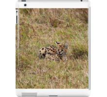 Serval on the Masai Mara iPad Case/Skin