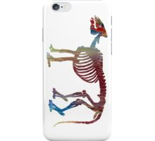 Phenacodus skeleton iPhone Case/Skin