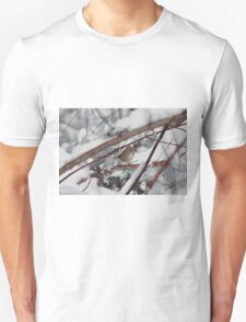 Song sparrow in the snowy brush T-Shirt