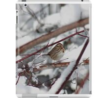 Song sparrow in the snowy brush iPad Case/Skin