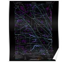 New York NY West Lowville 137010 1943 24000 Inverted Poster