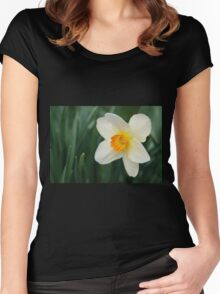 One Miniature Daffodil Women's Fitted Scoop T-Shirt
