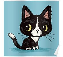 Cute black kitten Poster