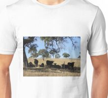 Black Angus Cattle taking advantage of the shade. Mt. Pleasant. Unisex T-Shirt