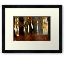 Vague autumnal memories Framed Print