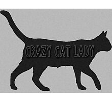 Crazy Cat Lady Silhouette Photographic Print