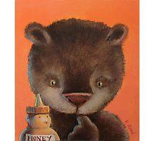 Honey bear Photographic Print