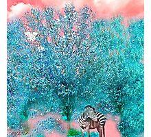 TREES ENCHANTMENT Photographic Print