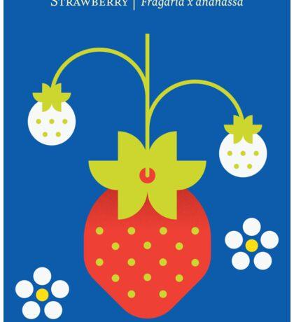 Fruit: Strawberry Sticker