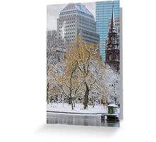 Winter in Boston Public Garden Greeting Card