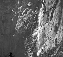 Yosemite Upper Yosemite Falls Plate 14 by John Schneider