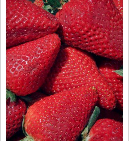 Berry Red!! Sticker