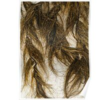 Creepy hair made of coconut husk Poster