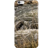 Umbagong district park (8) iPhone Case/Skin