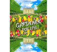 Petit Trianon Tulips Versailles Palace Gardens Paris France Photographic Print