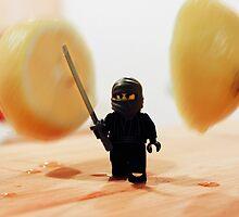 Fruit Ninja by thereeljames