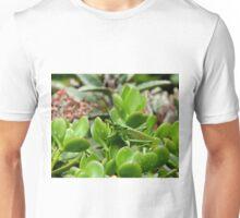 Kenya Grasshopper Unisex T-Shirt