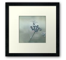 Pastel herbs - Cow Parsley, #herb, #bokeh, #dreamy, #redbubble Framed Print