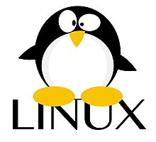 Linux Penguin Photographic Print