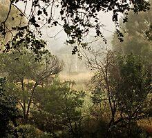 Umbagong district park (11) by Wolf Sverak
