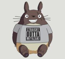Totoro - Miyazaki by bigsermons