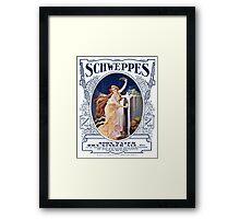 Schweppervescence Framed Print