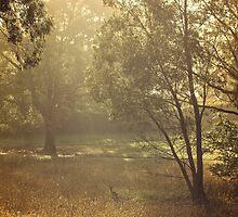 Umbagong district park (12) by Wolf Sverak