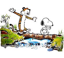 snoopy and hobbes Photographic Print
