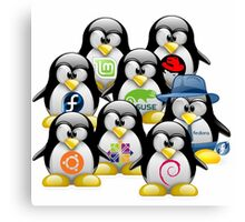 Linux Distro Canvas Print