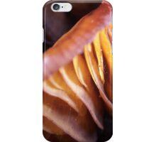 Velvet shank lamellae iPhone Case/Skin