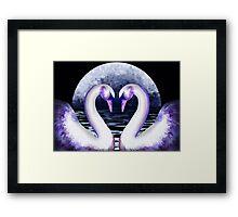 Moon Lit Swans Framed Print