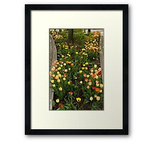 The Best Traffic Island in Town - Enjoying the Beauty of Spring Framed Print