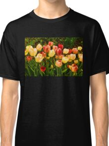 Impressions of Gardens - Particolored Vernal Tulips Classic T-Shirt