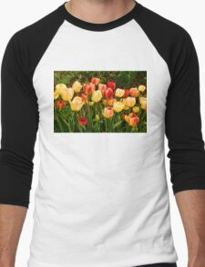 Impressions of Gardens - Particolored Vernal Tulips Men's Baseball ¾ T-Shirt