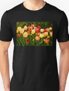 Impressions of Gardens - Particolored Vernal Tulips T-Shirt