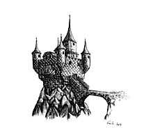 Lonely Castle Photographic Print