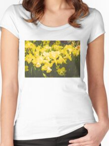 Impressions of Gardens - Golden Daffodil Blooms Women's Fitted Scoop T-Shirt