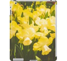 Impressions of Gardens - Golden Daffodil Blooms iPad Case/Skin