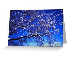 Snow on a Tree Greeting Card