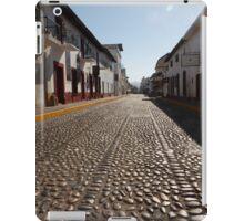cobblestone - empedrado iPad Case/Skin