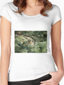 Cat Women's Fitted Scoop T-Shirt