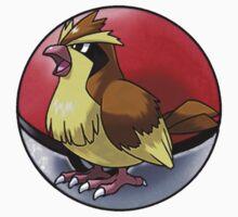 pidgey pokeball - pokemon by pokofu13