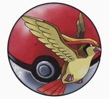 pidgeot pokeball - pokemon by pokofu13
