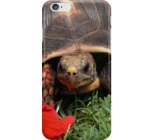 Tortoise and flower iPhone Case/Skin