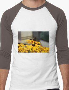 Bee on Rudbeckia Flowers Men's Baseball ¾ T-Shirt