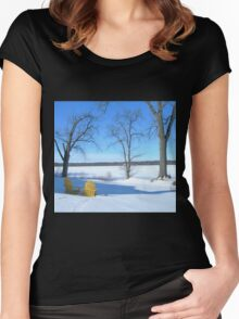 Winter Seating by the Shore Women's Fitted Scoop T-Shirt
