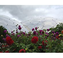 Biodome with some flowers Photographic Print