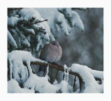 Collared Dove in Snow One Piece - Short Sleeve