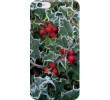 Frost on Holly Hedge iPhone Case/Skin