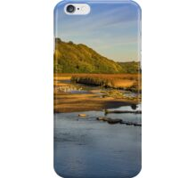 Newport Marshes iPhone Case/Skin